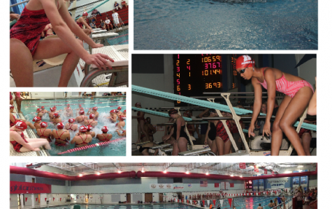 Swimmers dive into new season