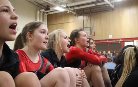 Homestead gymnasts set to host Highlander Invite