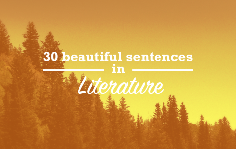 30 beautiful sentences in literature