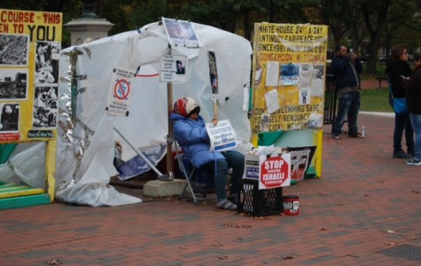 Concepcion Picciotto lives right in front of the White House.  She has lived here since 1981 and everday works to voice her opinion.