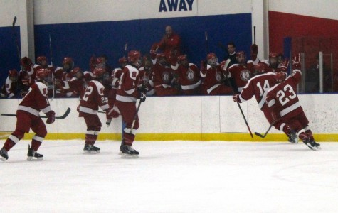 Homestead hockey skates through triumph and defeat