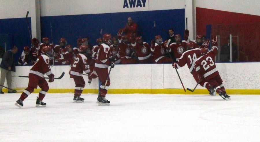 Cole Simpson and Adam Hobbs, seniors, celebrate a goal against the Brookfield Stars with the Highlander bench.