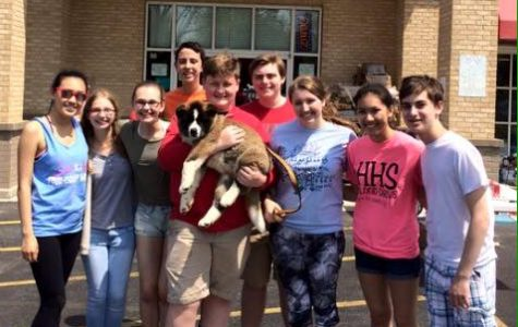 Student Council participates in annual dog wash