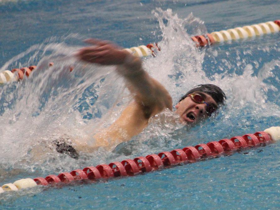 Phillip Zuccaro, senior, swims during the home meet against Milwaukee Lutheran.