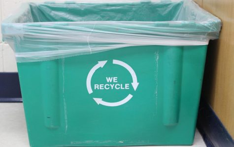 Trash Talk: The reality about recycling at Homestead