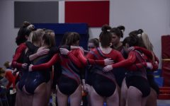 Photo Gallery: Homestead gymnastics vs. Whitefish Bay