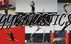 Girls gymnastics team qualifies for state
