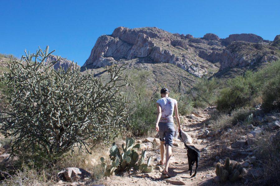 Angie Mason, English teacher, hikes through the Arizona desert.