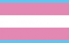 Transgender inclusion is a new topic of discussion in multiple realms.
