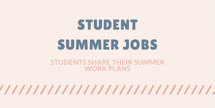 Students share summer job plans